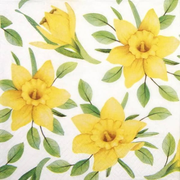 Paper Napkin - Daffodils in Bloom