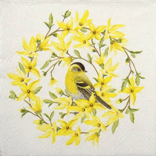 Lunch Napkins (20) - Forsythia & Bird