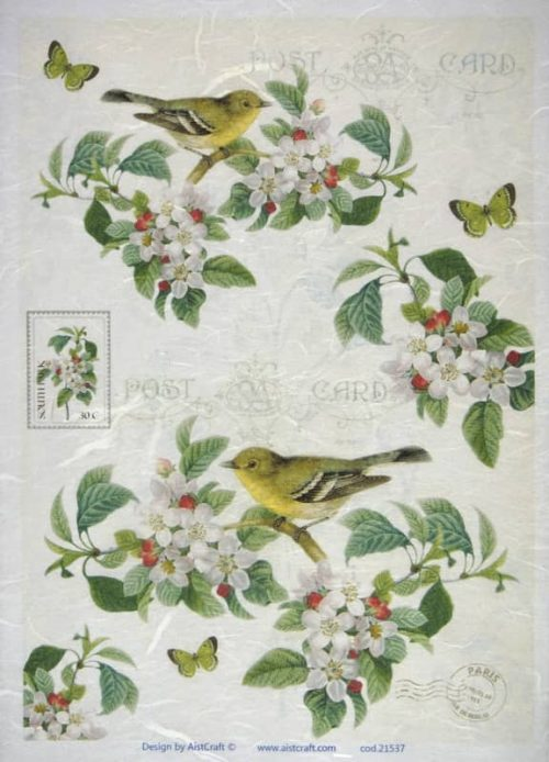 Rice Paper - Blossom and birds white