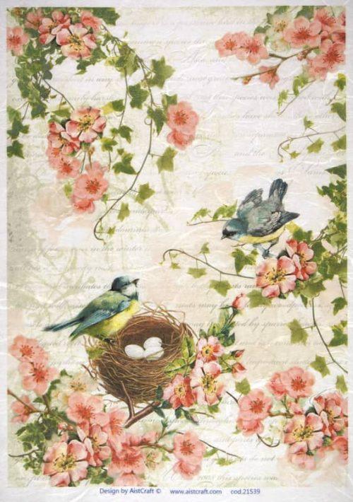 Rice Paper - Birds Family