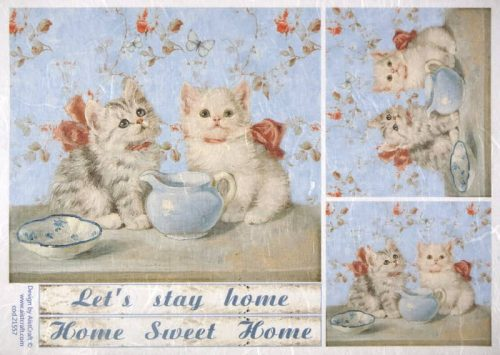 Rice Paper - Cats friends