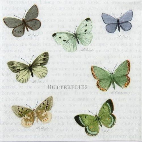 Paper Napkin - Seven Butterflies