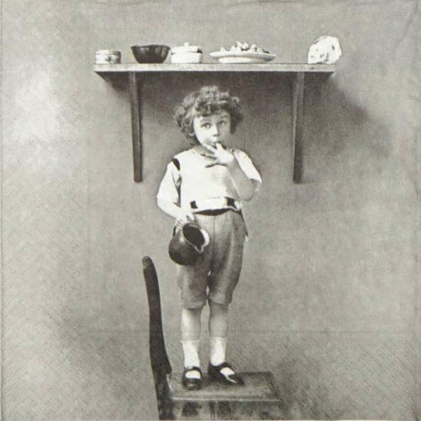 Lunch Napkins (20) - Boy Tasting