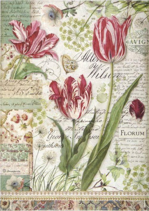 Rice Paper - Red Tulip