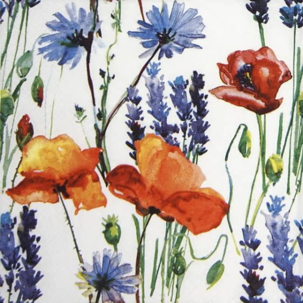 Lunch Napkins (20) - Wild Summer Flowers