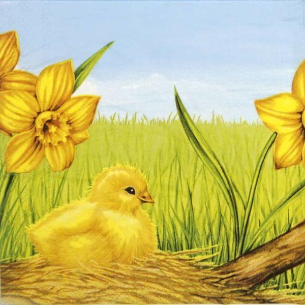Lunch Napkins (20) - Easter Starts