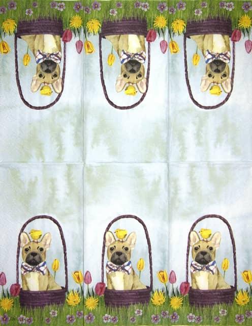 Paper Napkin - Bunny Dogs - 33x40cm