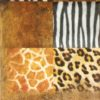 Paper Napkin - Wildlife