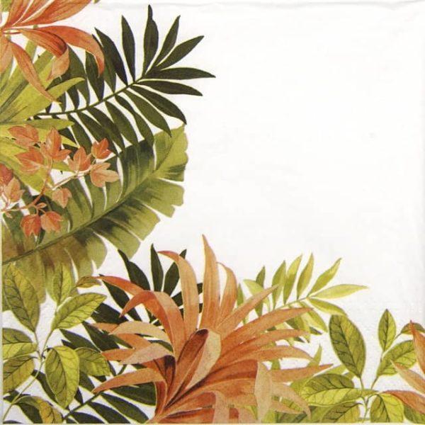 Paper Napkin - Exotic Frame