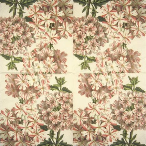 Lunch Napkins (20) - Geranium