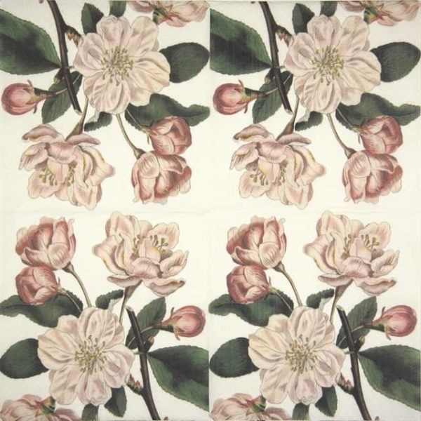 Lunch Napkins (20) - Apple Blossom