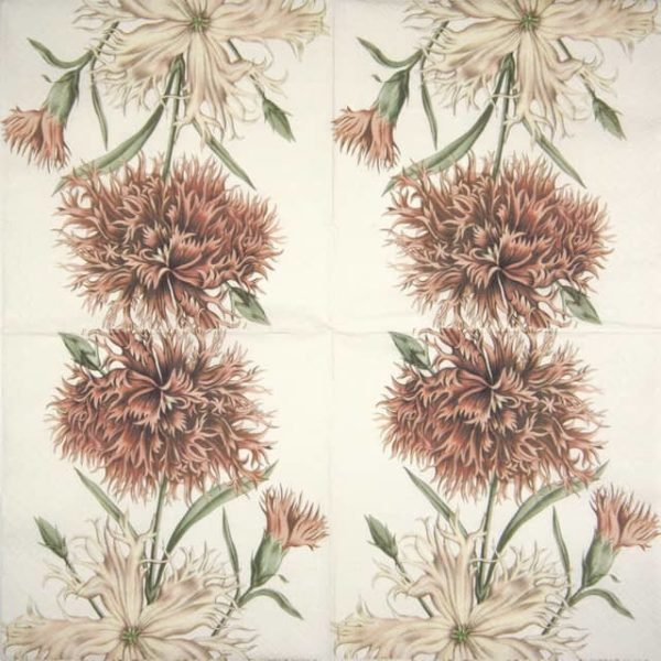 Lunch Napkins (20) - Carnations