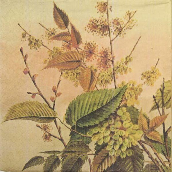 Paper Napkin - Autumn Motifs