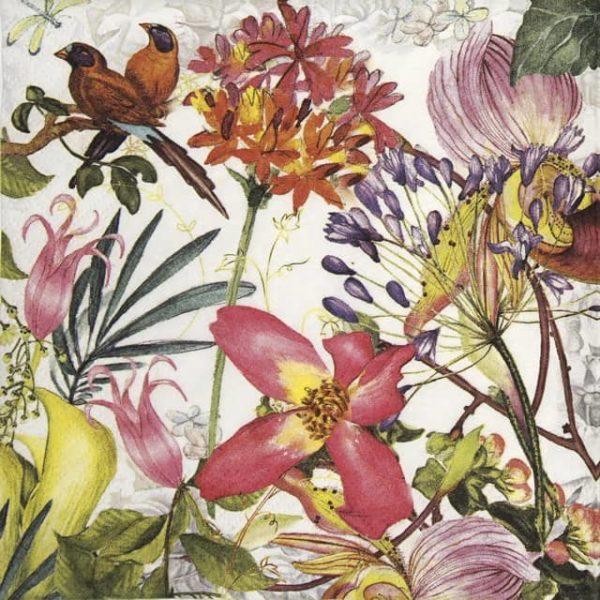 Lunch Napkins (20) - Exotic Garden