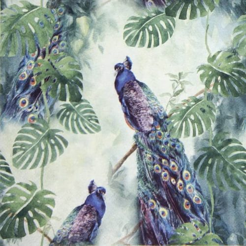 Lunch Napkins (20) - Peacock Paradise