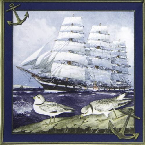 Lunch Napkins (20) - Windjammer