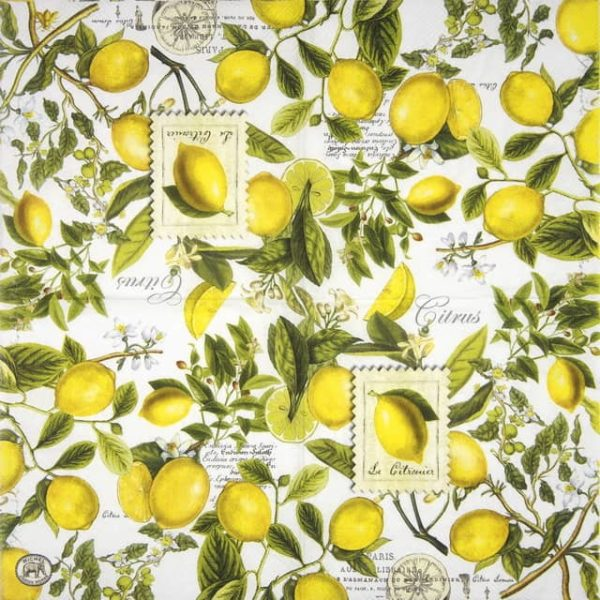 Lunch Napkins (20) - Lemon Basil