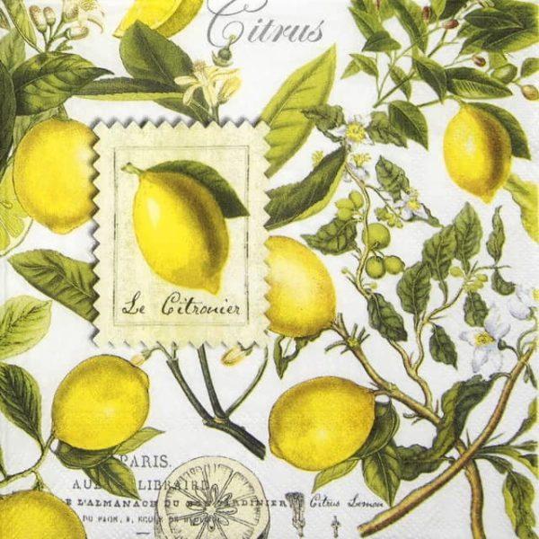 Paper Napkin - Lemon Basil
