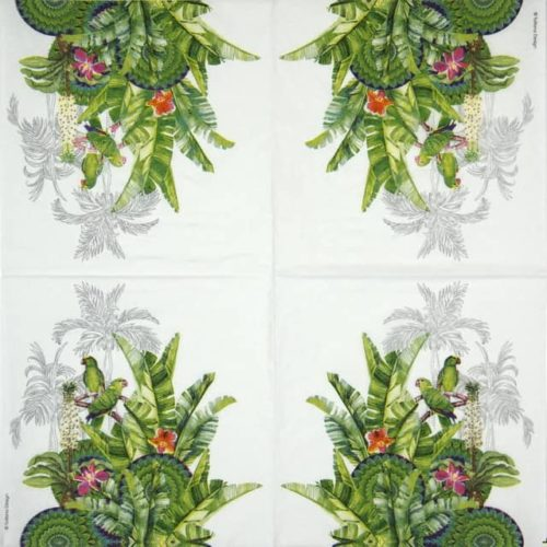 Cocktail Napkins (20) - Tatiana Design: Tropicale