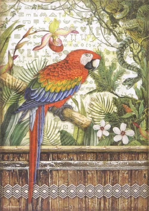 Rice Paper - Amazonia parrot