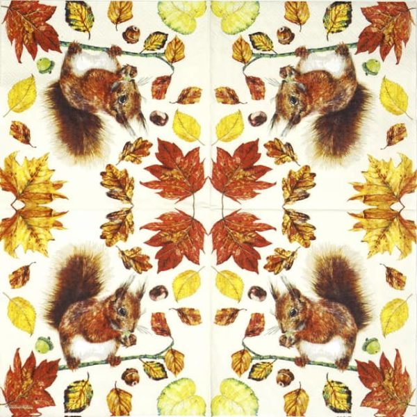 Lunch Napkins (20) -  Eating Squirrel