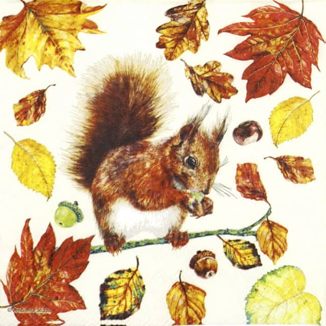 Paper Napkin - Eating Squirrel