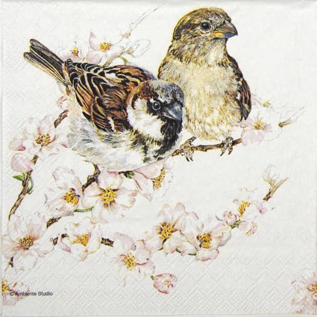 Lunch Napkins (20) - Sparrows blossom