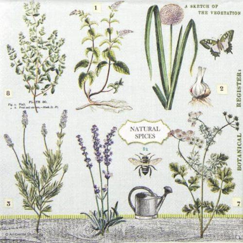 Paper Napkin - Herbs Garden
