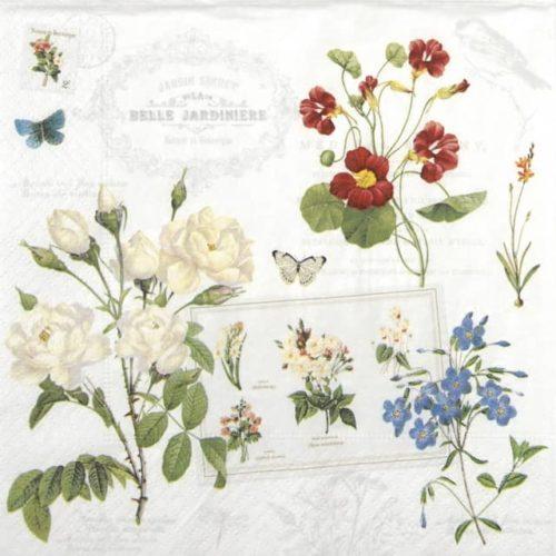 Paper Napkin - Naturalism