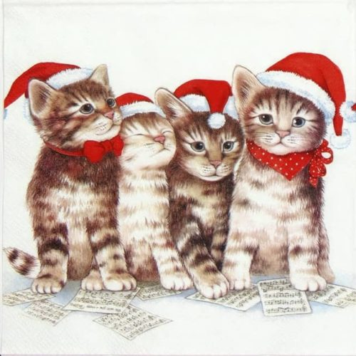 Lunch Napkins (20) - Singing Cats