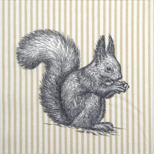 Lunch Napkins (20) - Etching Squirrel Lines