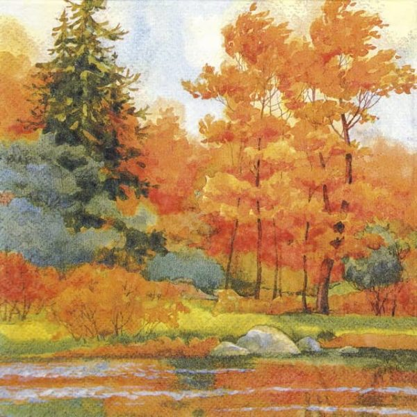 Paper Napkin - Forest Lake