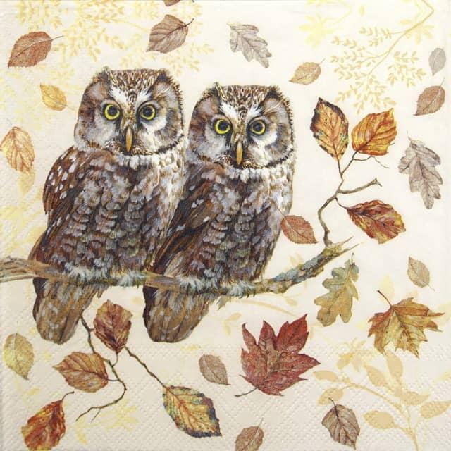 Cocktail Napkins (20) - Owl Couple