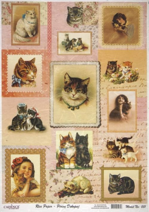 Rice Paper - Cats