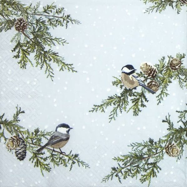 Lunch Napkins (20) - Birds on Branches