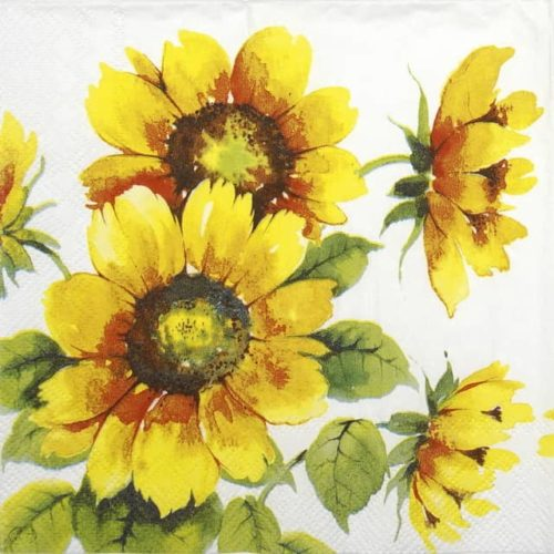 Lunch Napkins (20) - Colourful Sunflowers
