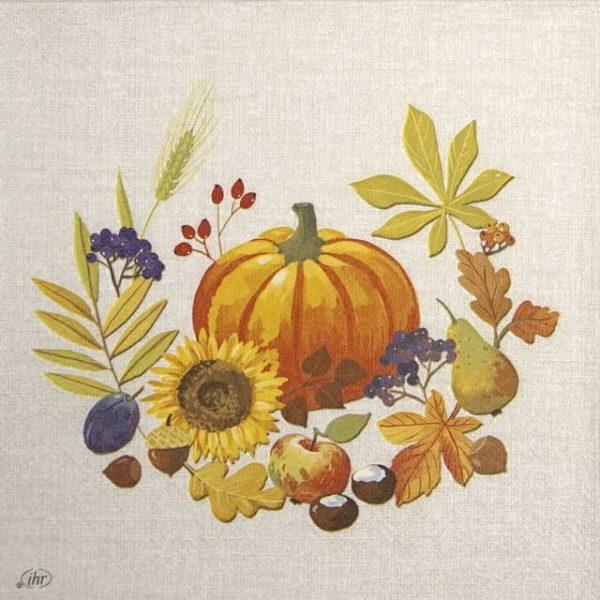Lunch Napkins (20) - Little Pumpkin