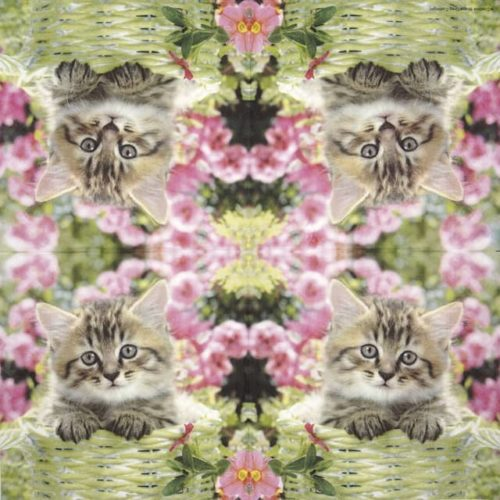 Paper Napkin - Little Molly