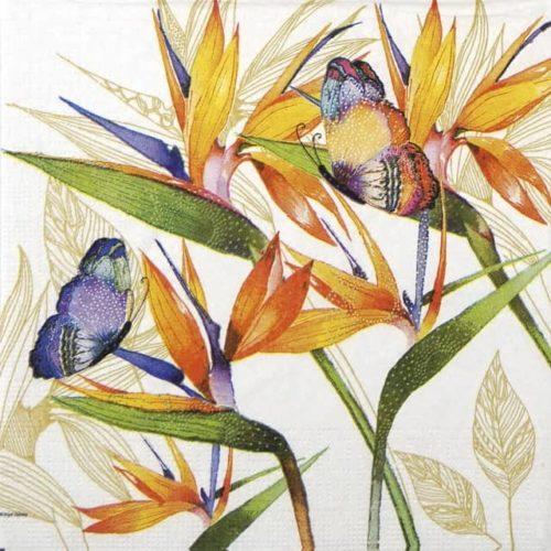Paper Napkin - Nigel Quiney: Parrot Flower