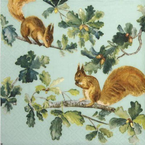 Paper Napkin - Squirrels