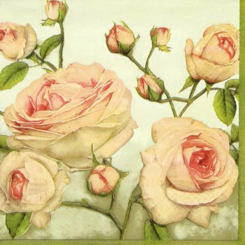 Lunch Napkins (20) - Beauty Roses