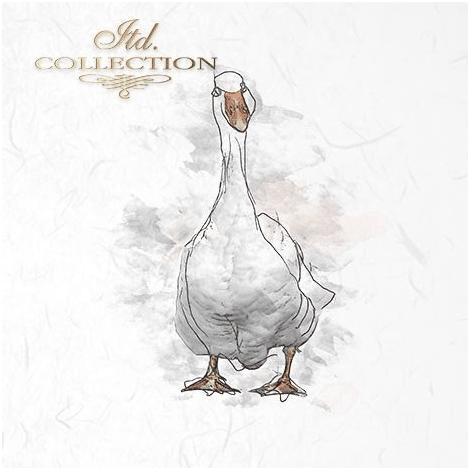 Rice Paper Set of 6 - Duck, Chicken, Goose