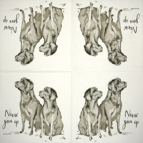 Lunch Napkins (20) - Anne Wrigh: Never Give Up