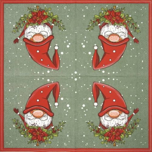 Lunch Napkins (20) -  Tomte