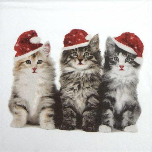 Paper Napkin - Xmas Cats