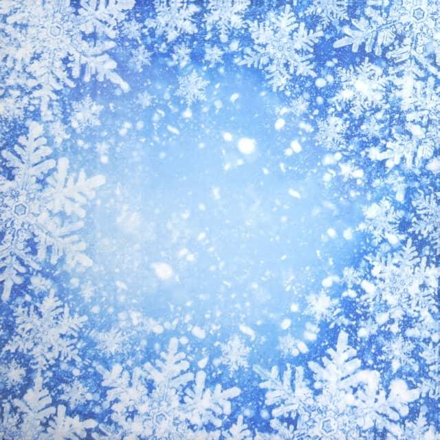 Paper Napkin - Frosty Window - Paw