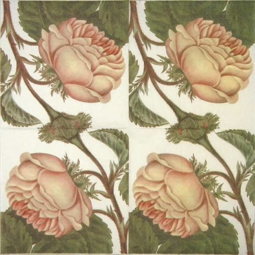 Paper Napkin - Rose