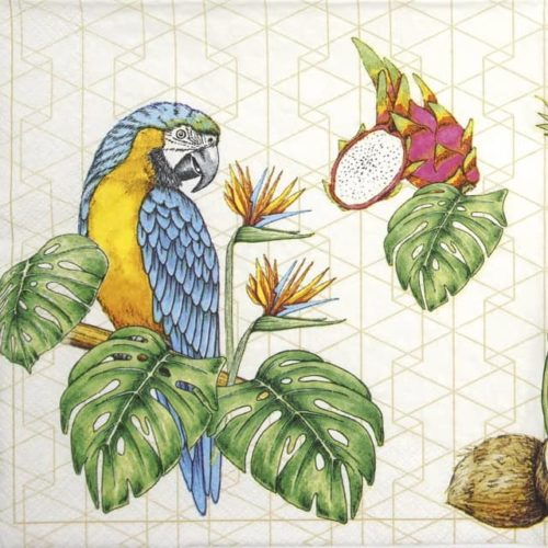 Paper Napkin - Parrots with Tropical Motifs_Daisy_SDOG033301