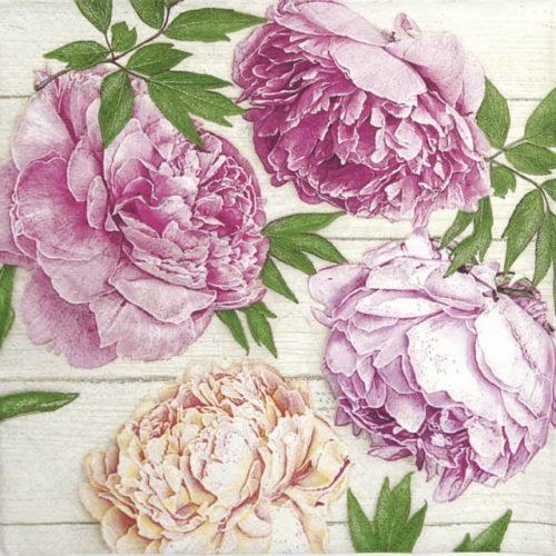 Paper Napkin - Romantic Peonies on White Wood_Daisy_SDOG033901