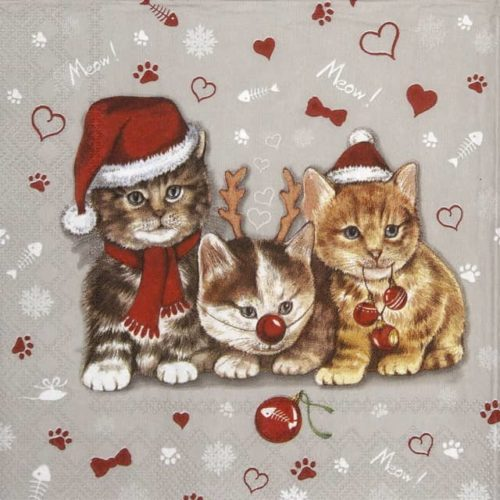 Cocktail Napkin - Cats Celebration grey_IHR_C922745